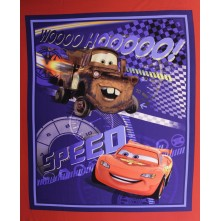 Disney's Car Panel